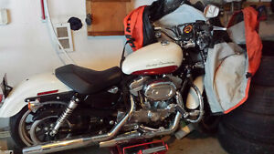 2012 Harley Sportster - Immaculate