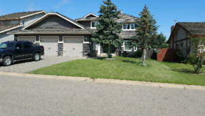 One bedroom basement suite available Sept 1st in Timberlea