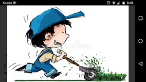 Grass/Lawn cutting North York, Downsview and Keswick
