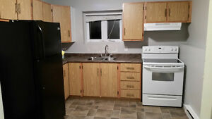 One Bedroom Apartment Mount Pearl
