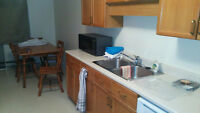 Wanted: Roommate to Move in Starting September 1st - Large appt,