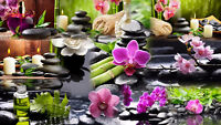 Looking for Registered Massage Therapist - West Calgary Location