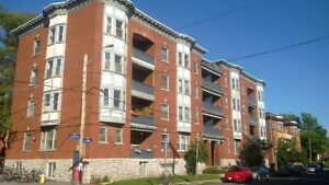 Glebe 2 Bedroom Apartment Great Location (585 O'Connor St)