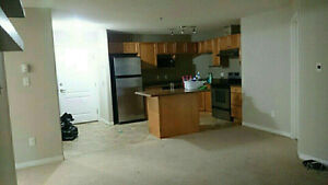 Condo in Terwillegar Edmonton available for rent $1500/month