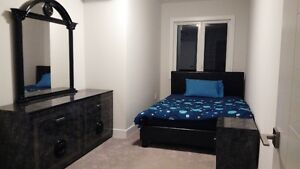 1 Bedroom Furnished Executive Style Apartment