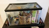 Entire Habitat for Hamster,Gerbil, etc