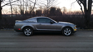 2008 Mustang Coupe Pony Package