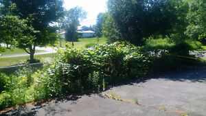 *NEW PRICE* Vacant Residential Lot - Enterprise, ON Kingston Kingston Area image 6