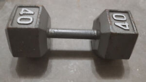 Weights - plates and dumbbells