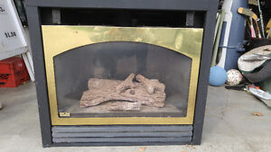 Napolean Direct Vent Propane Fireplace