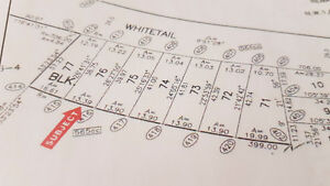 Beautiful Residential Building lot on Whitetail Golf Course