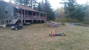Hunting Camp for sale.