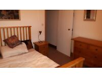 Share a place- lovely double bedroom in friendly neighbourhood
