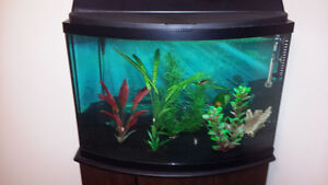 42 Gallon Curved Fish Tank and Stand
