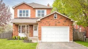 Walkout Basement Apartment Available Nov 1 For Rent in Whitby