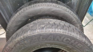 2 Avalanche Truck Tires