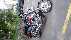 Très belle Harley- vrod a voir