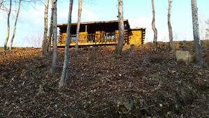 Waterfront Log Cabin on 2 Acres- Excellent Fishing