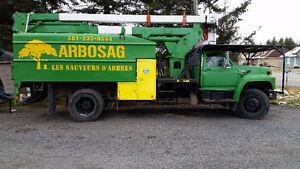 ARBOSAG!  Les Sauveurs d'Arbres Saguenay Saguenay-Lac-Saint-Jean image 2