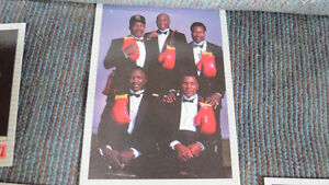 boxing cards 1991