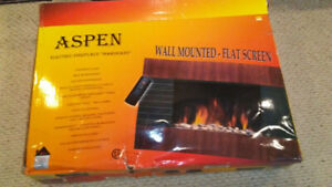 Electric Fireplace - Brought to you by ASPEN.