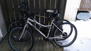 Two bicycles (Free or pay as you wish)
