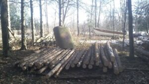 cedar posts and rails