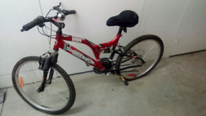 $125 Female Mountain Bike + Accessories