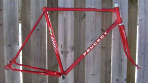Looking for a road bike frame