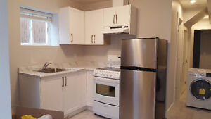 Brand new 1 bed suite in basement