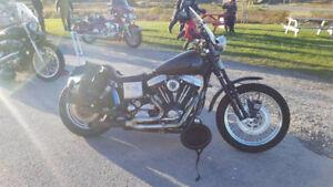 Harley dyna