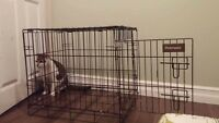 Small USED kennel