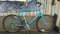 Raleigh Gator mens frame commuter by Lumpy Bikes