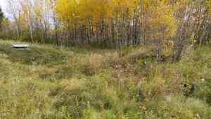 3.25 acres land  Strathcona County Edmonton Area image 4