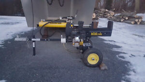 Champion 22 Ton Wood Splitter
