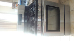 Samsung Gas Oven and Stove Manufactured January 2014