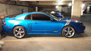 2000 FORD MUSTANG GT***CAMMED & NITROUS***430HP MUSCLE CAR