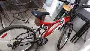 Vélo West Island Greater Montréal image 3