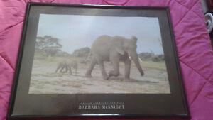 Large African Elephant with Calf Picture