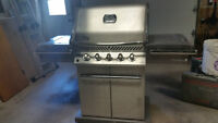 NAPOLEON Stainless Steel Natural Gas Barbeque