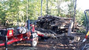 Dry Hardwood log length and Cut & Split. Kawartha Lakes Peterborough Area image 4