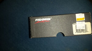 "acoustic active guitar pickup ""Fishman"""