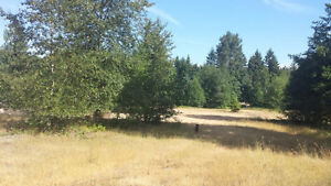 9+ Acres of Prime Light Industrial Land w/4-BD Level-Entry Home!