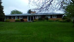 3 plus 1 bedroom Ranch House, with finished basement with bar!