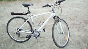Wanted Raleigh Sport Hybrid Bicycle