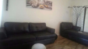Urgent : Grand 3 1/2 ( A large one bedroom)