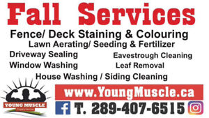 Fence&Deck Staining/Colouring