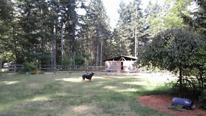 Large Acreage...NEW PRICE Campbell River Comox Valley Area image 6