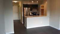 Open Kitchen and Stainless Steel Appliances - Mar 1