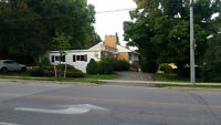 3BR-Main Level of a Renovated Bungalow -Eagle & Yonge-Newmarket